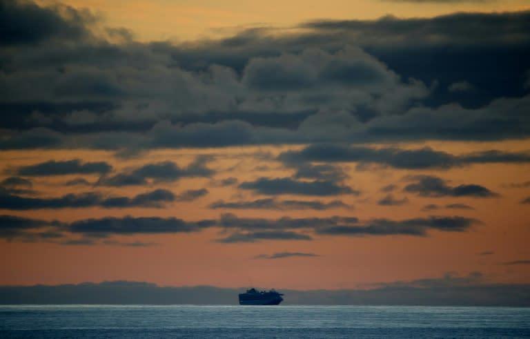 The Grand Princess, sitting off the coast of San Francisco (AFP Photo/JUSTIN SULLIVAN)