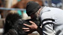 In land of gauchos, Argentine filmmaker spotlights horse meat trade