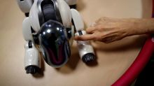 Aging Japan: Robots may have role in future of elder care
