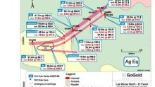GoGold Drills 3.3m of 3,675 g/t AgEq at El Favor in Los Ricos North Contained Within 52.1m of 306 g/t AgEq from Surface