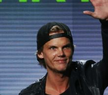 Avicii's Family Releases Statement Saying The DJ 'Could Not Go On Any Longer'