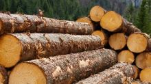 Is Western Forest Products (TSE:WEF) Using Too Much Debt?