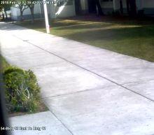 Video Shows Parkland Deputy Never Entered School As Mass Shooting Happened Inside