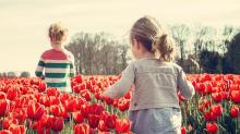 今天正值春分,帶你了解4個春分的趣事!