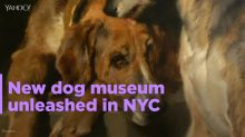 New York museum is going to the dogs