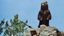 This chart shows a good sign for tech stocks, but the bear is ready to pounce