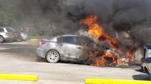 5 vehicles burn at busy Birds Hill Park