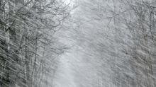 (FOTOS) Caos en Europa por la tormenta Friederike