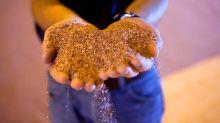 Demanda por fertilizantes segue positiva com câmbio favorável ao agricultor, diz Mosaic