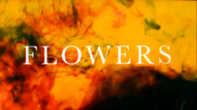 Flowers, a quiet comedy with the feel of a melancholy fairytale, is strikingly brilliant