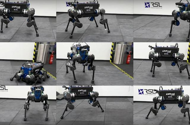 Researchers train robot dog to pick itself back up after a fall