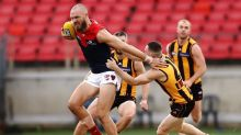 Impressive Dees smash Hawks in AFL