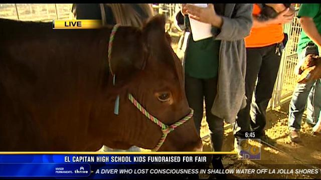 El Capitan High students achieve goal to raise money for fair