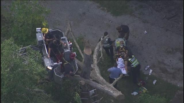Man stuck in tree in Porter gets leg amputated