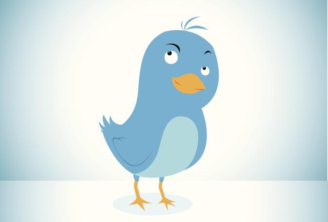 A blue bird in the social network