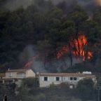Fires destroy 1,400 hectares of forest in southern France