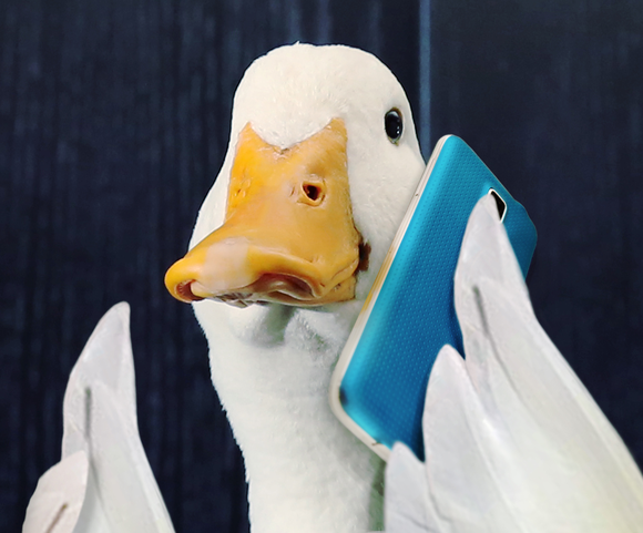 Aflac Gets A Big Windfall From Tax Reform