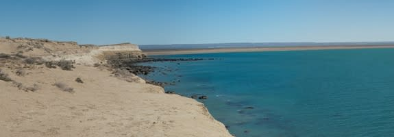 Argentine Wildlife Gain 2 New Marine Parks