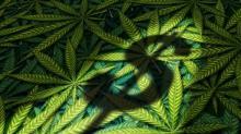 Better Marijuana Stock: Aurora Cannabis vs. KushCo Holdings