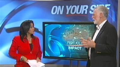 Expert Weighs In On Fish Kill