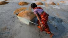 Firm rupee lifts Indian rice rates; Vietnam prices hold near 12-year low