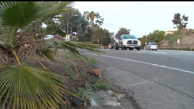 Police Release Details In Search Of Vehicle Involved in Fatal Hit And Run