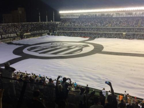 Sócios terão ingresso de graça para Santos x Paysandu, na Vila Belmiro