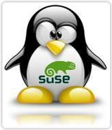 OpenSUSE is 12.1 versions old, and the .1 is important
