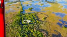 A flooded Everglades: Boon for birds but high waters threaten some species