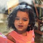 2-year-old Gabriella Vitale found alive and healthy after she was missing overnight in northern Michigan woods