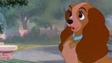 Disney's Lady and the Tramp casts Marvel star as Lady