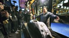Japanese businessman buys large tuna for $1.8 million: 'Yes, this is expensive, isn't it?'