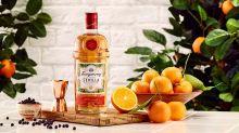 Adeus, vodka: gin com sabor é tendência no Brasil