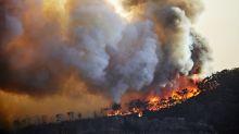 En voulant brûler ses excréments, il allume un incendie de dix hectares
