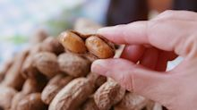 If You've Never Tried Boiled Peanuts, Today Is The Day