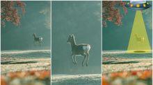 【今日GIF】日網民影到飄浮小鹿 改圖變片樣樣有