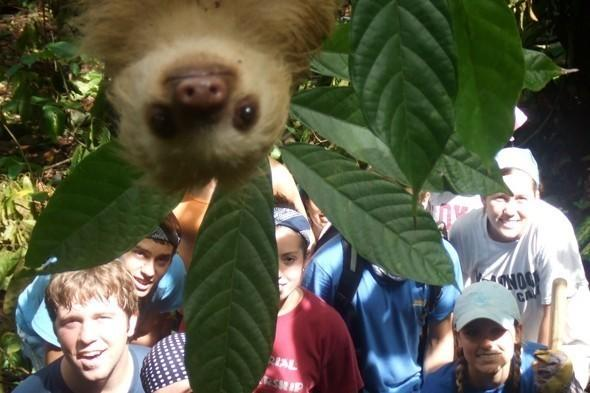 <p>A scene-stealing sloth dropped in on a group of school kids who were taking part in an International Student Volunteers expedition in Costa Rica giving them an unforgettable holiday photograph.</p>  <p></p>