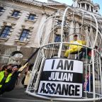 A Canary Yellow-Clad Vivienne Westwood Fights for Julian Assange