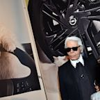 Meet the Cat That May Inherit Part of Karl Lagerfeld's Fortune