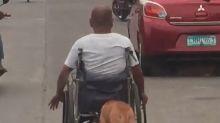 El perro más leal que existe ayuda a su dueño a empujar la silla de ruedas