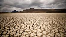 U.S. must halve emissions to galvanize global climate action - UN chief