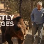 GOP candidate in Newsom recall race campaigns with giant grizzly bear, calling for 'big beastly changes'