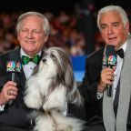 What to know about the 2020 National Dog Show on Thanksgiving Day