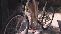 Gulfport woman uses Craigslist to help solve theft of her own bicycle