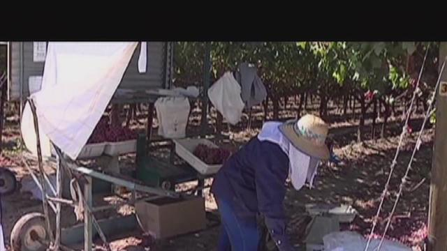 Lawmakers discuss immigration overhaul bill for farm workers