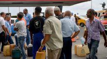 Cuba apela à tração animal para cultivar cana por crise energética