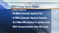 2013 Turkey Watch Report from Florida TaxWatch
