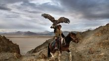 Animal magnetism: Stunning Steve McCurry photos show the complex relationship between humans and animals