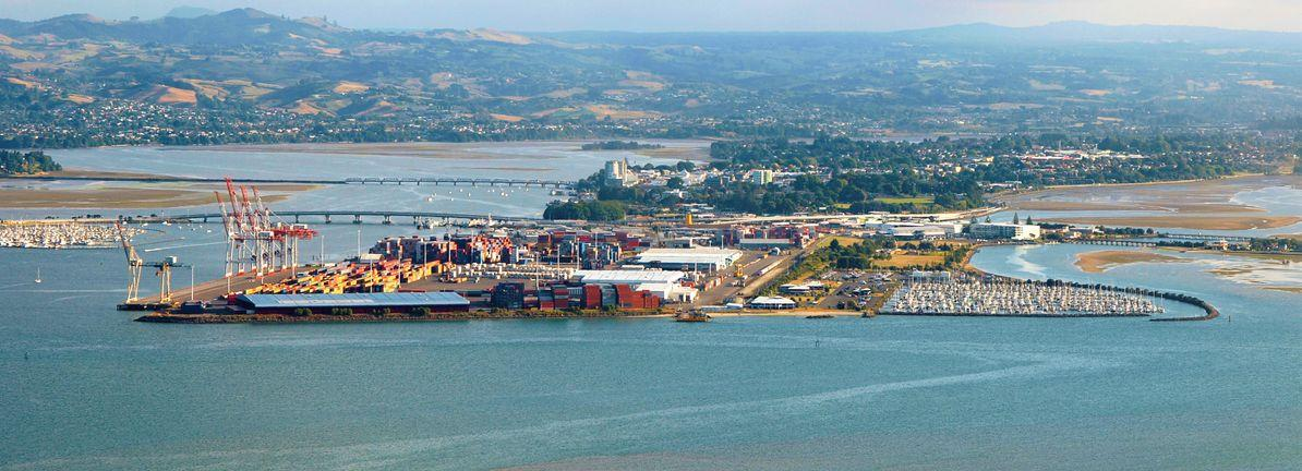 Is Port of Tauranga (NZSE:POT) A Risky Investment?