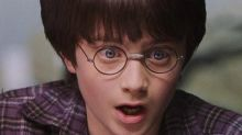 Man reading 'Harry Potter' realises he's actually bought adult fan fiction